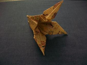https://cf.ltkcdn.net/origami/images/slide/62955-800x600-100_1467.JPG