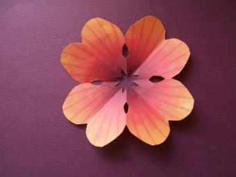https://cf.ltkcdn.net/origami/images/slide/63109-800x600-7.jpg