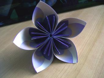 Visual Instructions for Origami Paper Flowers