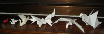 Origami Dragons Expert Interview