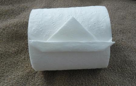 origami toilet paper sailboat
