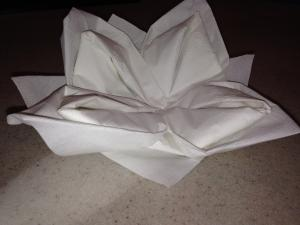 waterlily napkin