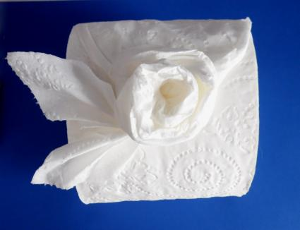 Make a rose with toilet paper origami toilet paper rose mightylinksfo