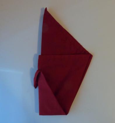 napkin peacock fold 4