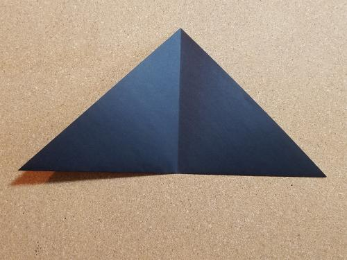 step 2- fold again and unfold
