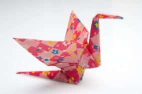 Try Other Origami Birds