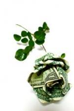 Origami Money Rose