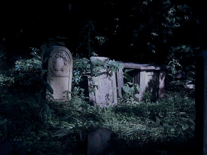 https://cf.ltkcdn.net/paranormal/images/slide/10931-800x600-Abandoned-cemetery.jpg