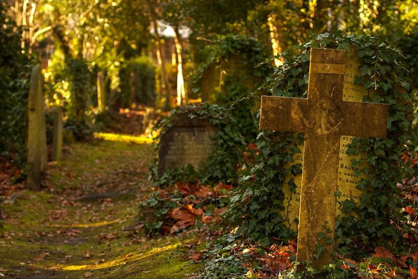 https://cf.ltkcdn.net/paranormal/images/slide/245877-850x567-highgate-cemetery-london.jpg