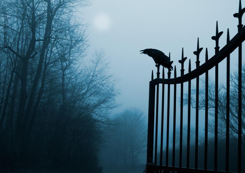 https://cf.ltkcdn.net/paranormal/images/slide/245884-850x600-raven-on-cemetery-gate.jpg