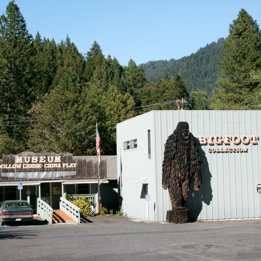 https://cf.ltkcdn.net/paranormal/images/slide/246071-850x850-Bigfoot_Museum_Willow_Creek.jpg