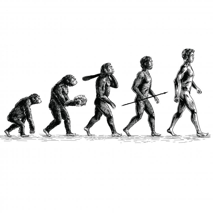 https://cf.ltkcdn.net/paranormal/images/slide/246074-850x850-evolution.jpg