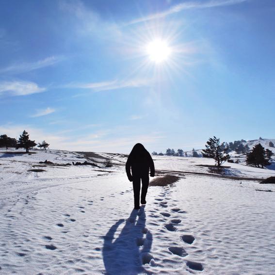 https://cf.ltkcdn.net/paranormal/images/slide/246077-567x567-bigfoot-in-snow.jpg