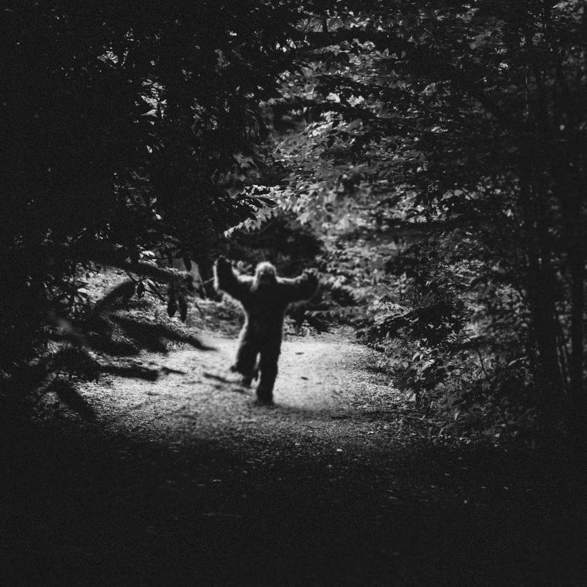 https://cf.ltkcdn.net/paranormal/images/slide/246133-850x850-yeti-sighting.jpg