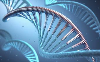 Alien Genetics: What Their DNA Can Tell Us