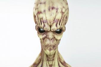 https://cf.ltkcdn.net/paranormal/images/slide/214928-704x469-Spooky-Alien.jpg