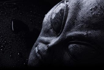 https://cf.ltkcdn.net/paranormal/images/slide/214930-704x469-Alien-Face.jpg