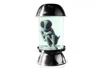 https://cf.ltkcdn.net/paranormal/images/slide/214931-704x469-Alien-inside-test-tube.jpg