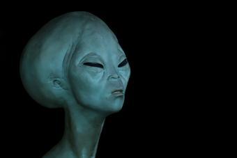 https://cf.ltkcdn.net/paranormal/images/slide/215217-704x469-Alien-in-the-dark.jpg