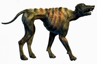 https://cf.ltkcdn.net/paranormal/images/slide/226230-704x469-Chupacabra-wild-dog-illustration.jpg