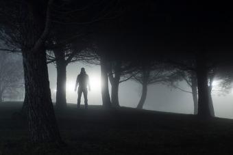 https://cf.ltkcdn.net/paranormal/images/slide/231279-850x567-the-purfler.jpg