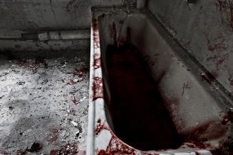 https://cf.ltkcdn.net/paranormal/images/slide/238431-850x567-bathtube.jpg