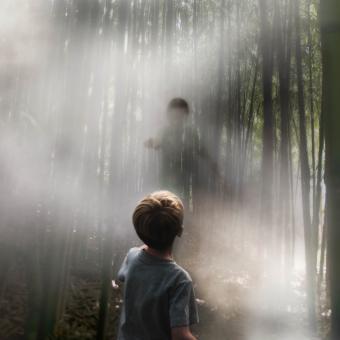 boys in the fog