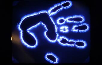 Kirlian Photograph of Hand