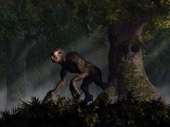Jersey Devil Sightings & Chilling Stories From Over the Years