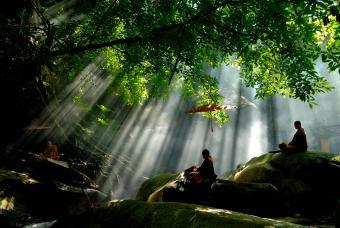Buddhist monks meditating in nature