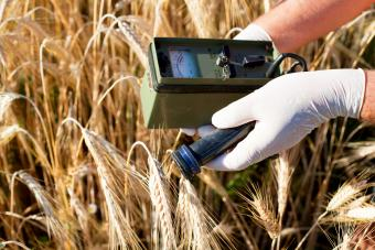 Man Holding Geiger Counter On Field