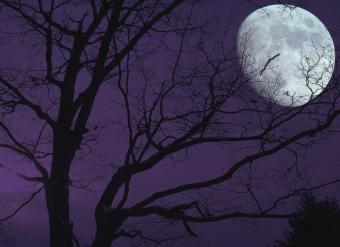 Dark night sky with large moon