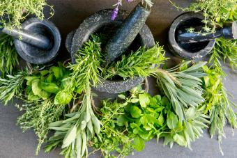 Mortars and pestles with fresh herbs against rustic background