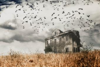 9 American Haunted Houses Packed With the Paranormal