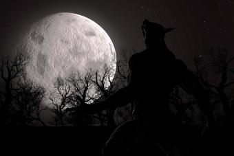werewolf during the full moon in the creepy forest
