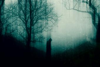 A spooky hooded figure standing in a forest