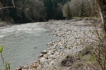 Stillaguamish River South Fork