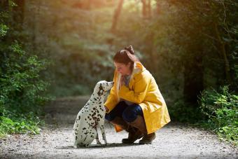Woman with Dalmatian dog on woodland path