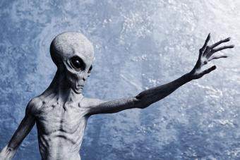 https://cf.ltkcdn.net/paranormal/images/slide/277152-850x567-grey-alien.jpg