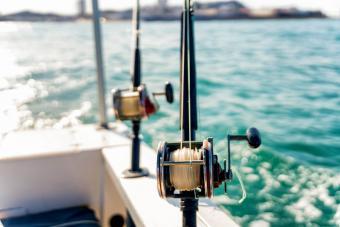 Deadly Fishing Trip