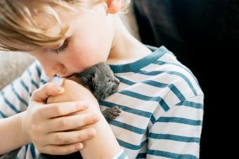 Boy holding a Tiny Newborn Kitten