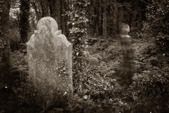 Are Ghosts Real?13Theories for and Against Their Validity