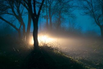 Car Lights in Fog