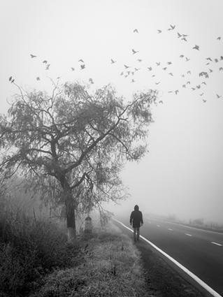 Phantom Man of Highway 12