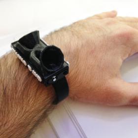 Paranologies wrist recorder