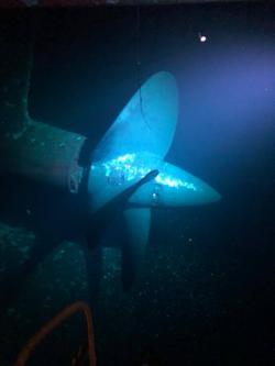 Queen Mary propeller