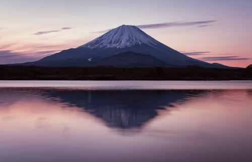Japan's Suicide Forest - Mount Fuji