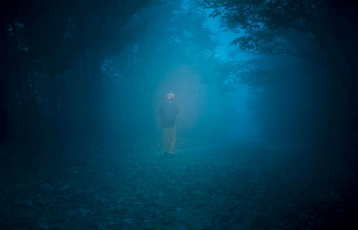 Male walking in a forest with fog