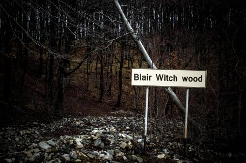 Blair Witch Wood