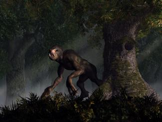 Artist's rendering of a forest cryptid